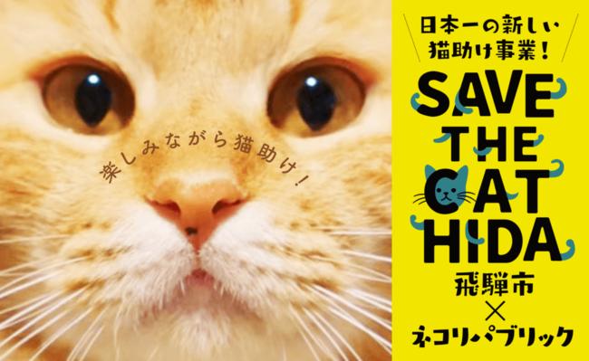 飛騨市、ふるさと納税で猫助けプロジェクト「SAVE THE CAT HIDA」に協力[ニュース]